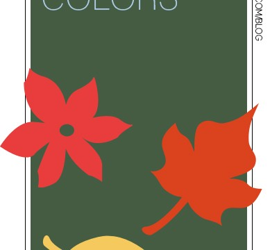 my favorite color trends for fall 2015