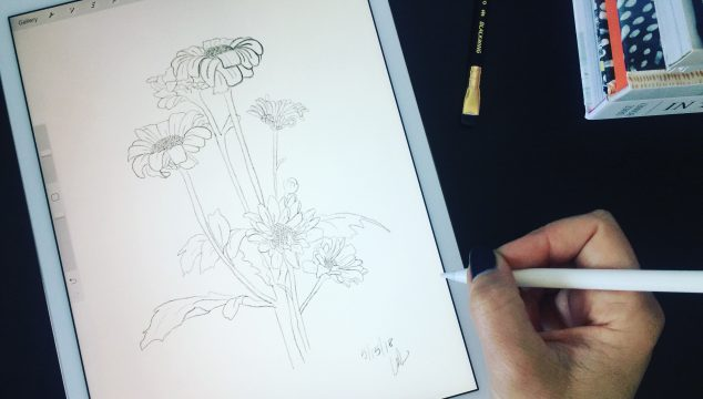 gently sketched daisies – what I'm learning about realizing your dream