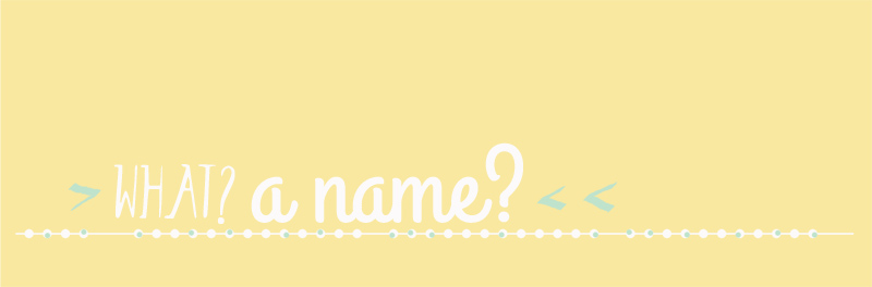 bluebirdchic_name_banner_web