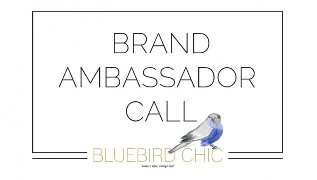 Bluebird Chic Ambassador Call | February 2016