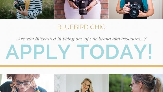 Bluebird Chic Brand Ambassador Call – April 2018